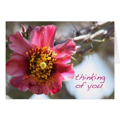 """Flor del cactus de Cholla """"que piensa en usted """" Tarjeta"""