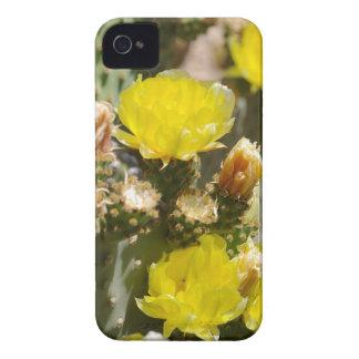 Flor del cactus iPhone 4 funda