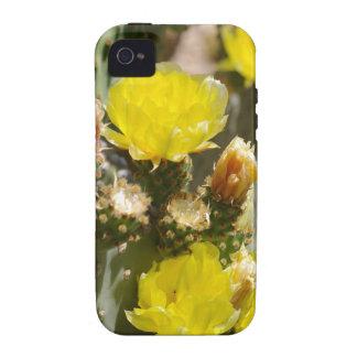 Flor del cactus iPhone 4 fundas
