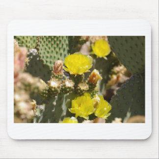 Flor del cactus mousepads