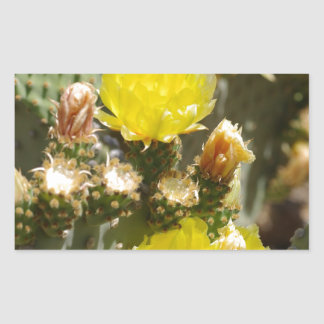 Flor del cactus pegatina rectangular