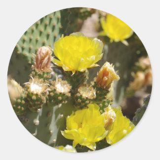 Flor del cactus pegatina redonda