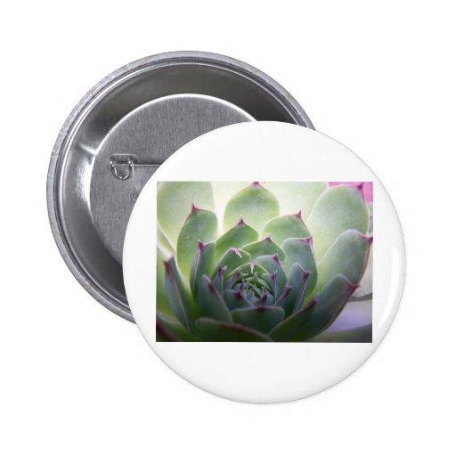 Flor del cactus pin redondo 5 cm
