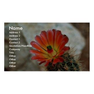Flor del cactus tarjetas de visita