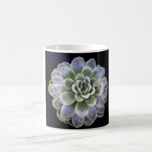 Flor del cactus tazas de café