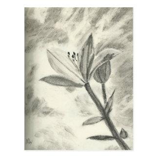 Flor del carbón de leña postal