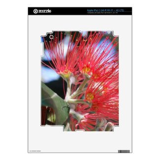 Flor del cepillo de botella iPad 3 pegatina skin