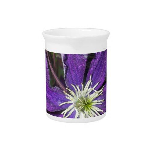 Flor del Clematis púrpura Jarra