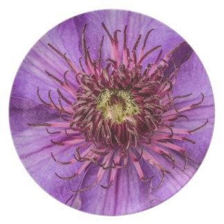 Flor del Clematis púrpura Platos Para Fiestas