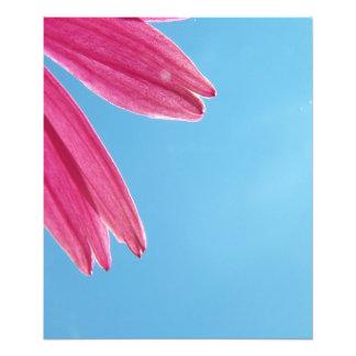 Flor del cono y cielo azul fotografía