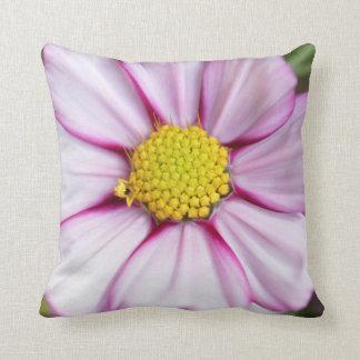 Flor del cosmos (bidens Formosa) Cojines