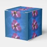 Flor del cosmos paquete de regalo para fiestas