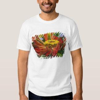 Flor del crisantemo camisas