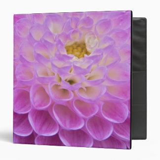 """Flor del crisantemo que adorna el sitio grave aden carpeta 1 1/2"""""""