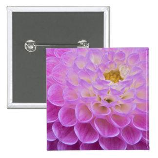 Flor del crisantemo que adorna el sitio grave aden pin cuadrado