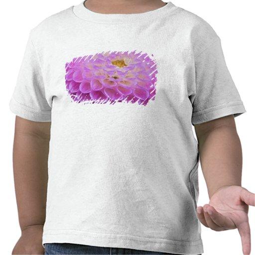 Flor del crisantemo que adorna el sitio grave camiseta