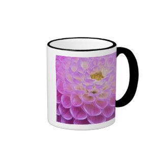 Flor del crisantemo que adorna el sitio grave taza de dos colores