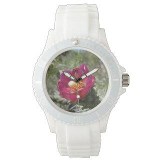 Flor del desierto de Cholla del bastón Reloj De Mano