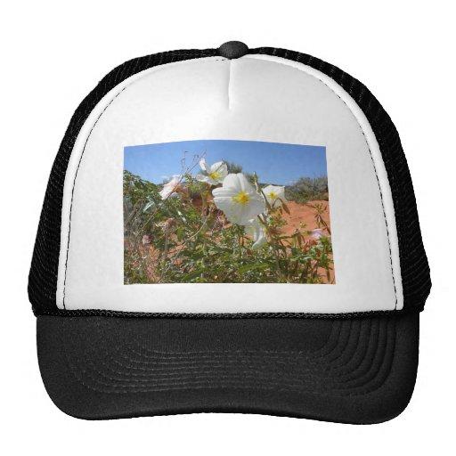 Flor del desierto gorros bordados