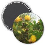 Flor del desierto imanes para frigoríficos