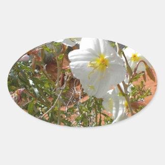 Flor del desierto calcomanía de oval personalizadas