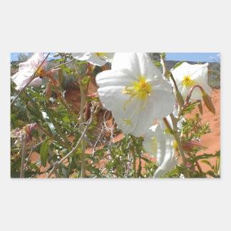 Flor del desierto rectangular altavoces