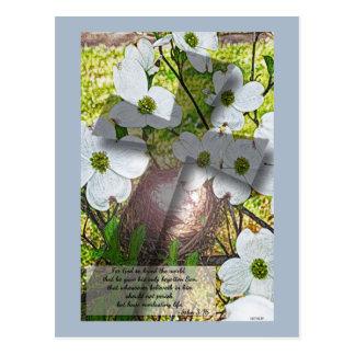 Flor del Dogwood y postal cruzada del 3:16 de w/Jo