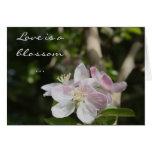 Flor del flor - saludo del amor tarjeta