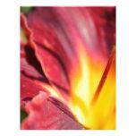 Flor del fuego plantilla de membrete