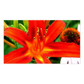 Flor del fuego tarjetas de negocios