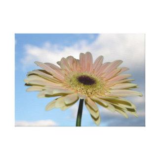 Flor del Gerbera de junio en el cielo Impresiones En Lona Estiradas