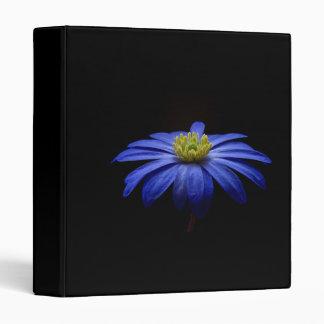 "Flor del Gerbera de la margarita azul en un fondo Carpeta 1"""