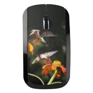 Flor del girasol de la fauna de los pájaros del ratón inalámbrico