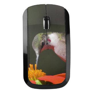Flor del girasol de la fauna del pájaro del ratón inalámbrico