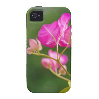 Flor del glabra del Bougainvillea iPhone 4/4S Funda