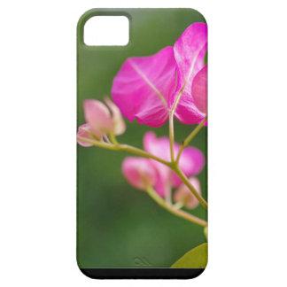Flor del glabra del Bougainvillea iPhone 5 Case-Mate Carcasa
