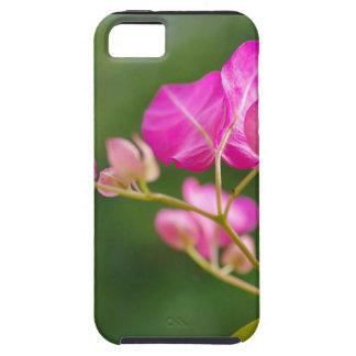 Flor del glabra del Bougainvillea iPhone 5 Case-Mate Protector
