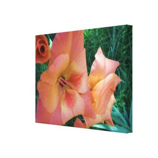 Flor del gladiolo del melocotón lienzo envuelto para galerias