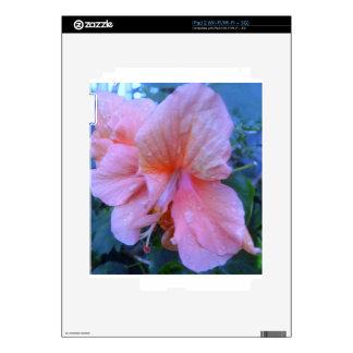 Flor del hibisco calcomanía para iPad 2