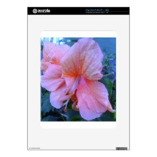 Flor del hibisco calcomanías para iPad