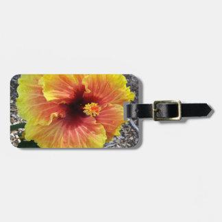 Flor del hibisco de Hawaii Etiquetas Maleta