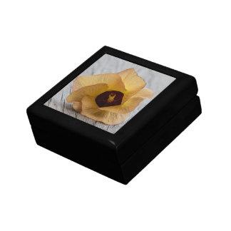 Flor del hibisco del melocotón cajas de joyas