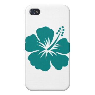 Flor del hibisco del trullo iPhone 4/4S funda