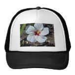 Flor del hibisco gorros bordados