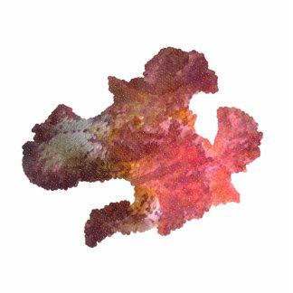 flor del iris imagen digital esculturas fotográficas