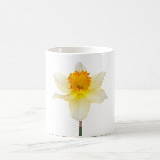 Flor del jacinto taza de café