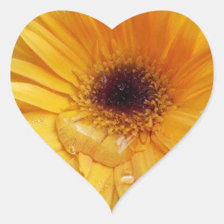 Flor del jardín pegatinas corazon