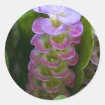 Flor del jengibre pegatinas
