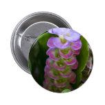 Flor del jengibre pins
