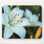 Flor del lirio blanco alfombrilla de ratón